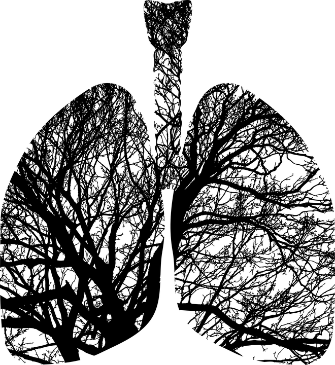 Fibrinolysis in Acute Pulmonary Embolism
