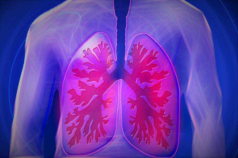 Pharmacologic Therapies in Patients With Exacerbation of Chronic Obstructive Pulmonary Disease: A Systematic Review With Meta-analysis.