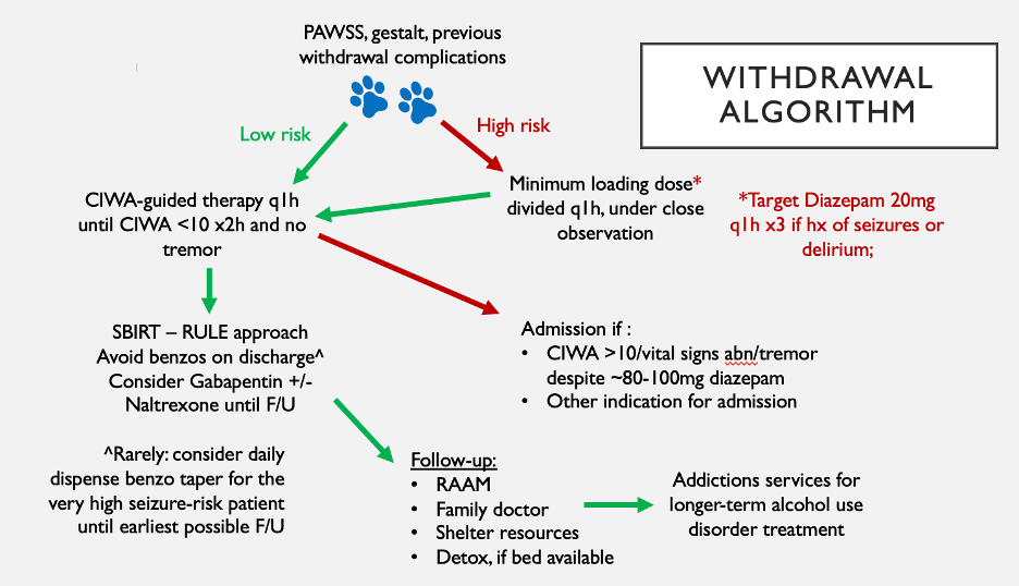 Alcohol Withdrawal Algorithm