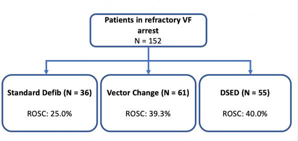 Refractory VF Resuscitation